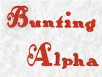 Bunting Alphabet Machine Embroidery Designs