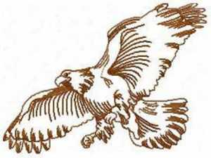 Eagle Outlines