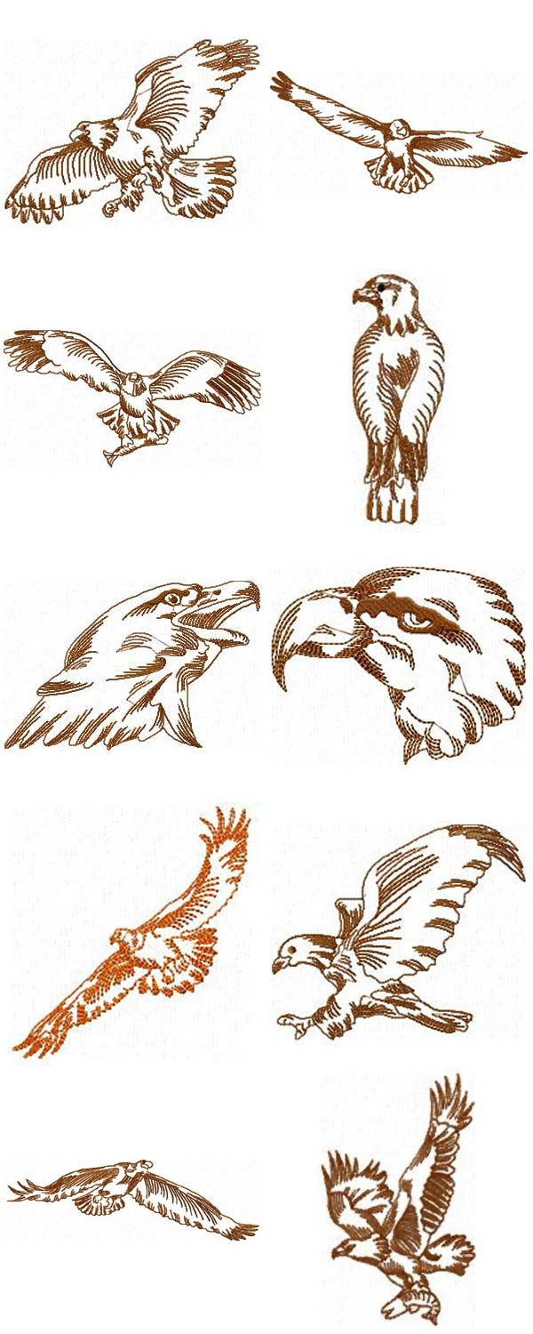 Eagle Outlines Embroidery Machine Design Details