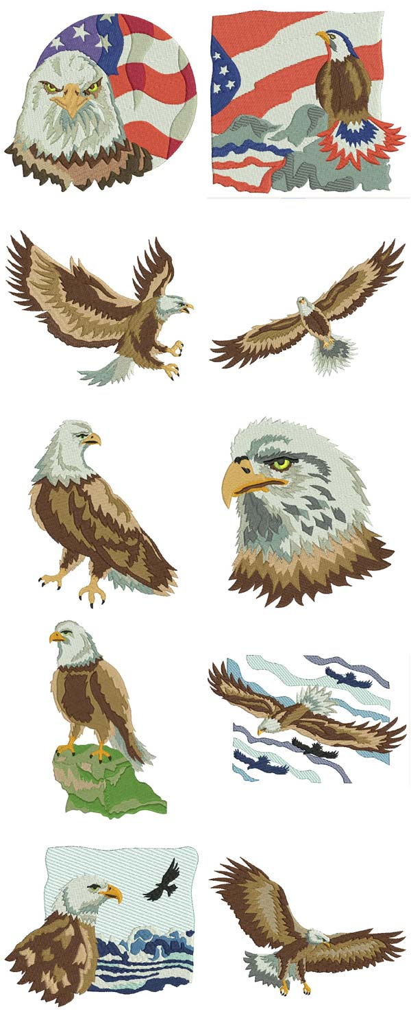Eagles Embroidery Machine Design Details