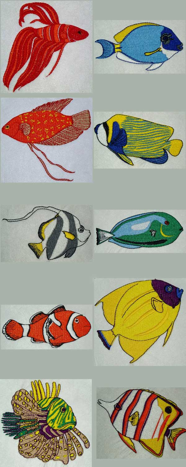 Tropical Fish Embroidery Machine Design Details