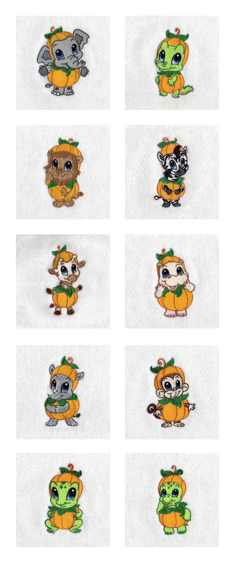 Baby Zoo Pumpkins Embroidery Machine Design Details