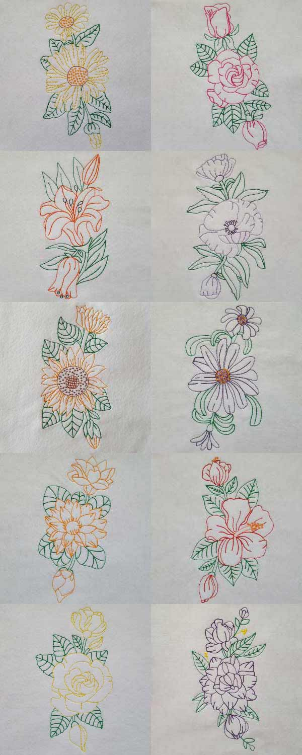 Color Line Flower Borders Embroidery Machine Design Details