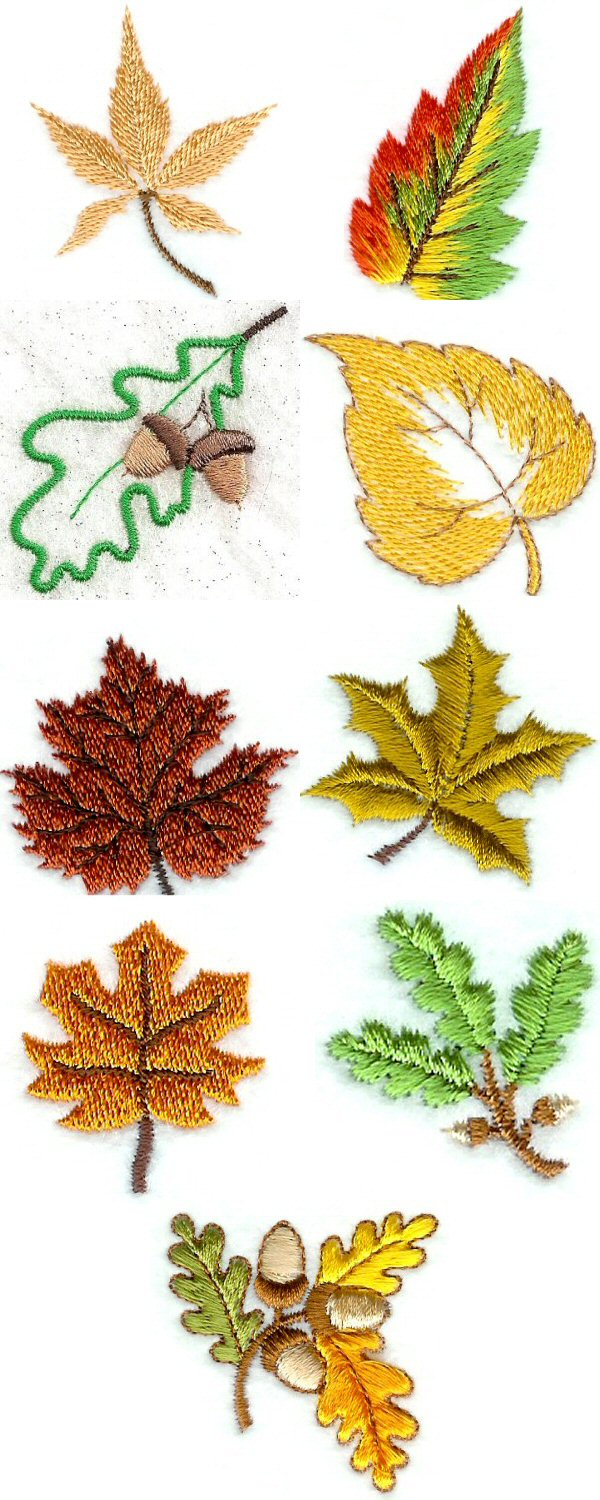 Mini Autumn Leaves Embroidery Machine Design Details